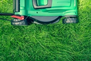 Why You May Want To Hire Professional Lawn Care Services