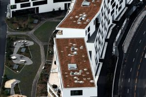 This Is What You Need to Consider When Choosing the Proper Roofing For Your Building
